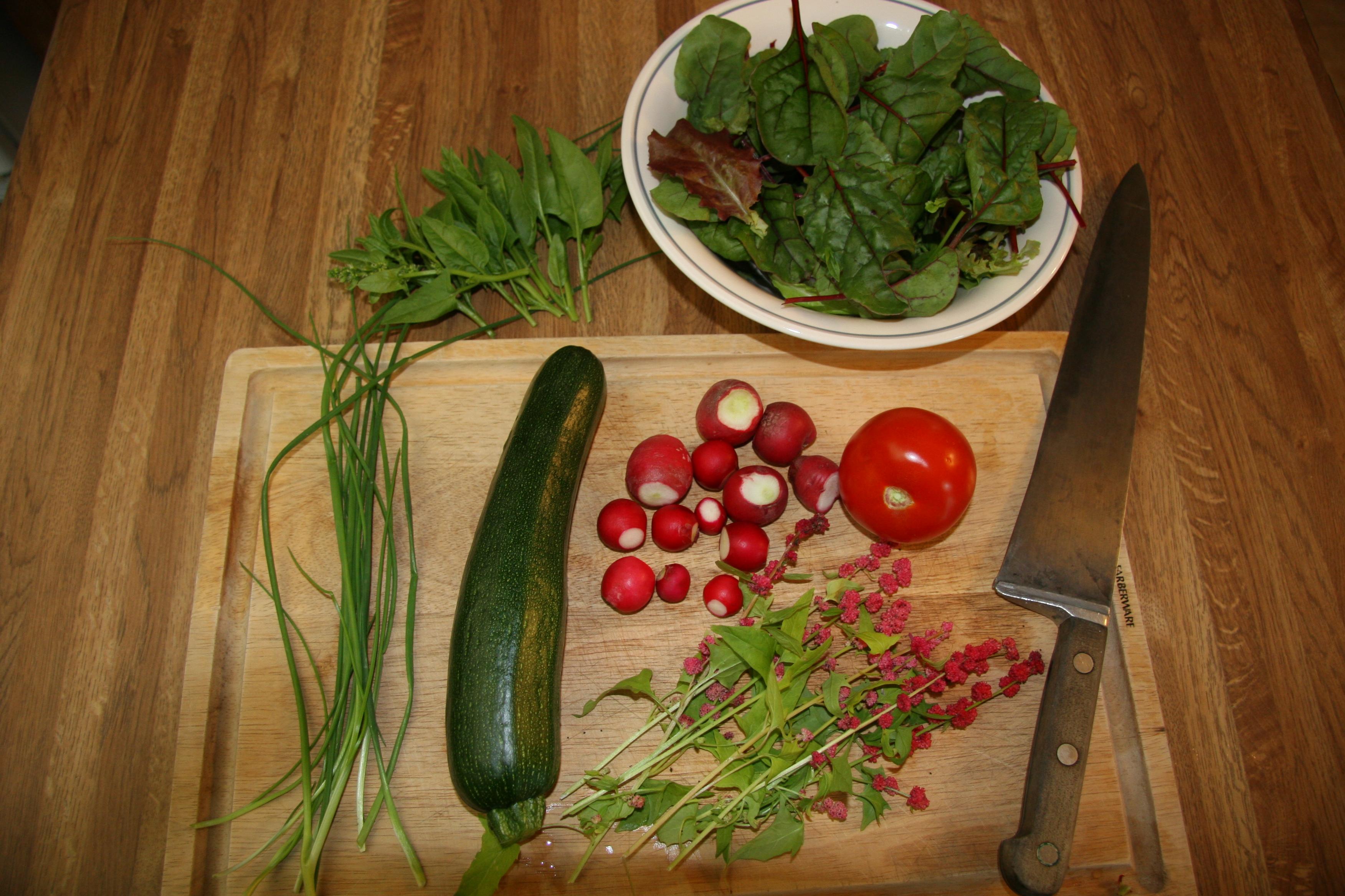 From the vegetable garden in Tok | Living in Tok Alaska: Social ...